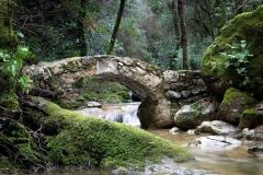 Pont sur le Bruguet